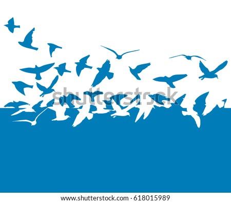 Flying birds in the sky. Vector