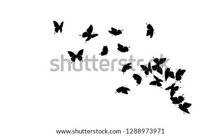 Flying butterflies silhouettes. Vector design element.