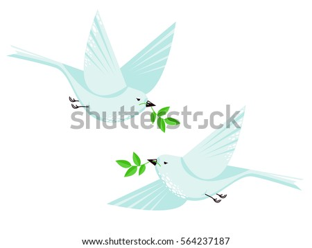 flying dove bird couple and