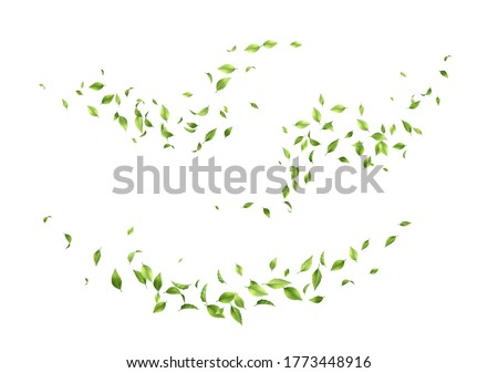 Flying green leaves. Set of waves formed by green leaves