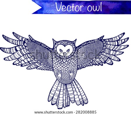 flying hand drawn vector owl