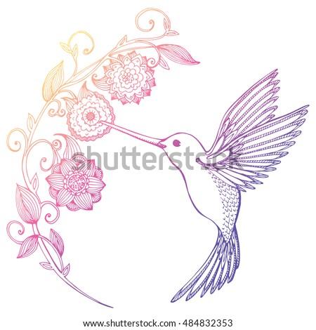 flying hummingbird hummingbird