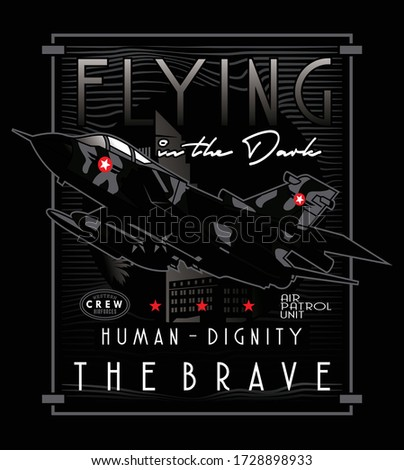 flying in the dark vector