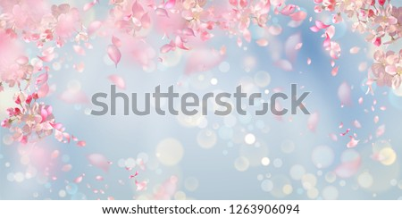 Flying petals on a blue background. Flowers and petals in the wind. Vector background with spring plum or cherry blossom #1263906094