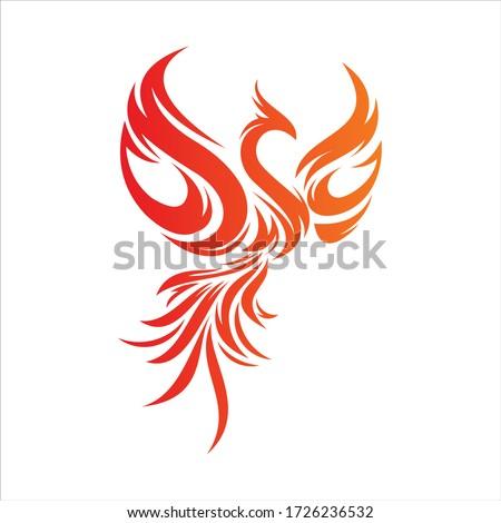 flying phoenix fire bird