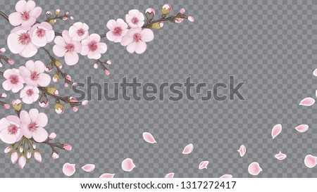Flying sakura flowers. The idea of textile design, wallpaper, packaging, printing. Handmade background in Chinese style. Magenta on white fond.