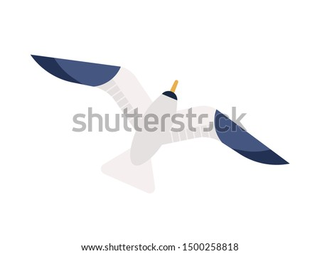 Flying seagull flat vector illustration. Gliding gull with spread wings minimalistic sign. Marine bird, nautical wildlife top view. Feathered animal, seabird, sea mew isolated on white background.