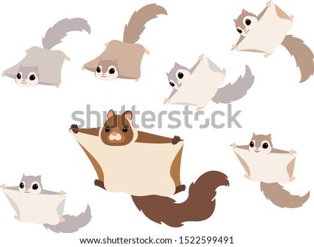 Flying squirrels illustration set (Japanese giant flying squirrel, Japanese lesser flying squirrel, Russian flying squirrel)