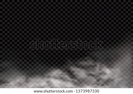 Fog or smoke isolated transparent special effect. White vector cloudiness, mist or smog background. Vector illustration - Vector illustration stock photo