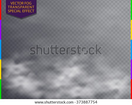 Fog or smoke isolated transparent special effect. White vector cloudiness, mist or smog background. Magic haze, steam illustration.