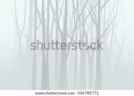 foggy forest vector