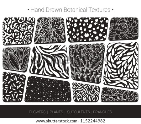 Foliage, floral vector textures. Botanical design for organic branding, wedding invitation, greeting card, fashion textile, floral prints. Hand drawn flower bloom, succulent, tree branch pattern.