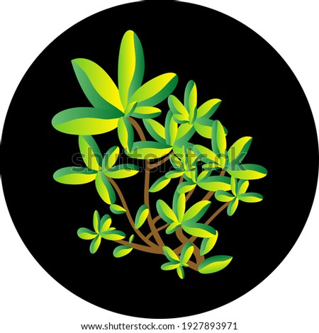foliage vector stock