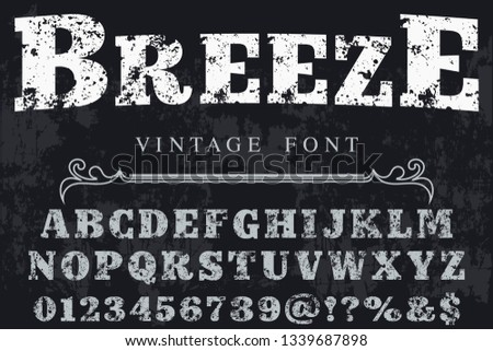 Font script typeface set named breeze Brush painted characters  lowercase and uppercase  Handwritten script font Typography alphabet for your designs
