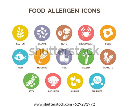 Food allergen icons set. 14 food ingredients that must be declared as allergens in the EU. EPS 10 vector. Useful for restaurants and meals. Сток-фото ©