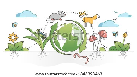 Food chain process cycle with producers and apex predators outline concept. Natural animal wildlife feeding web levels example vector illustration. Detritivores or decomposer species educational model Сток-фото ©