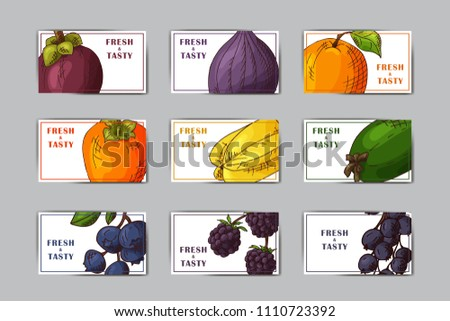Food design with vegetable. Hand drawn sketch of beet and daikon. Organic fresh product for card or poster design for cafe, market. Colorful vector illustration