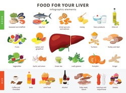 Food for Liver infographic elements isolated on white background. Healthy and unhealthy foods for human liver and gallbladder health icons in flat design.
