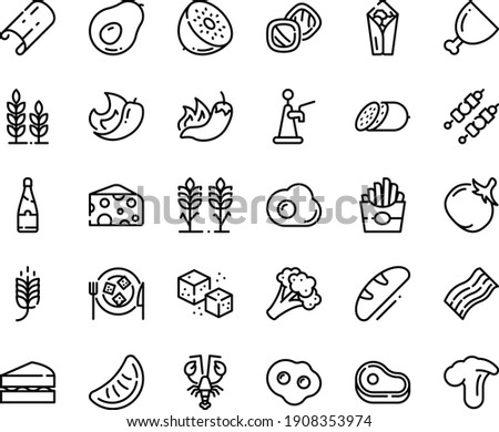 Food line icon set - meat, spike, french fries, burito, hot pepper, lobster, cheese, salami, plate, refined sugar, ham, kebab, sowbelly, omelette, champagne, bread, spikes, sanwich, cookies, wheat