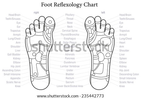 foot reflexology chart with