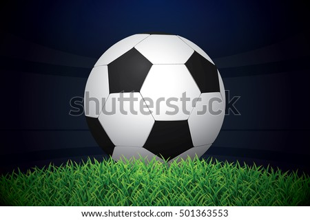 football   soccer ball on grass