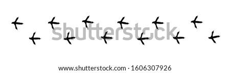 Footpath trail of bird. Turkey or partridge paws walking randomly print vector isolated on white background. bird footprints. Trail footpath wildlife, footprint silhouette illustration