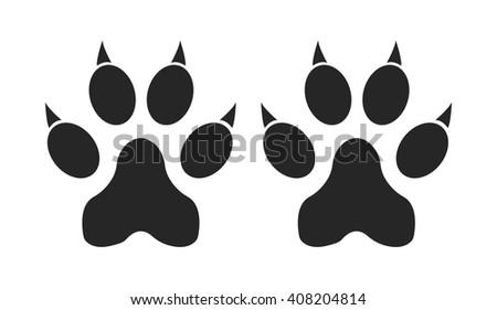 Footprints of a large cat (tiger, lion, panther)