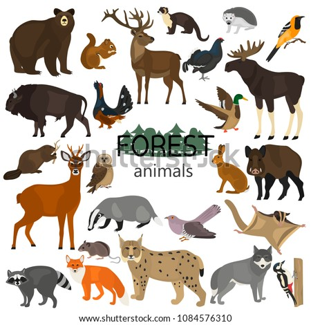 forest animals color flat icons