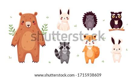 Forest animals set isolated. Funny cartoon characters for kids. Bear, fox, owl, hedgehog, raccoon, hare. Vector illustration. Flat eps10. Сток-фото ©
