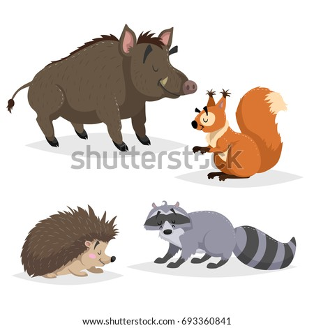 Forest animals set. Raccoon, hedgehog, squirrel and wild boar. Happy smiling and cheerful characters. Vector zoo illustrations isolated on white background.