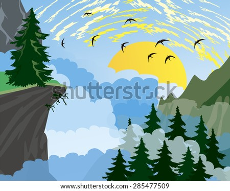 forest background with fir
