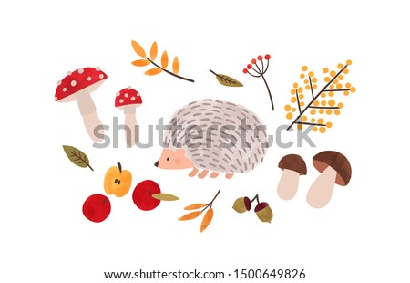 Forest flora and fauna hand drawn vector illustration. Autumn season symbols watercolor painting. Hedgehog, foliage, mushrooms, organic apples and natural berries isolated on white background.