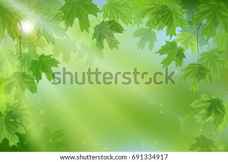 forest fresh green leaves with