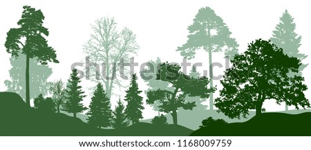 forest green trees silhouette