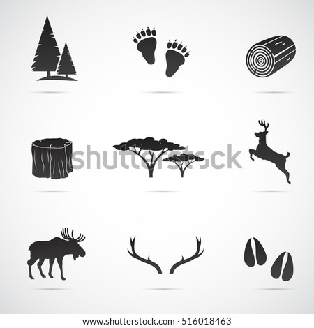 Forest icon set isolated on white background. Vector art.