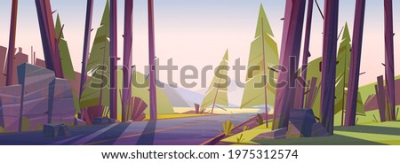 forest landscape with road and