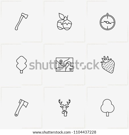 Forest line icon set with tree, compass and strawberry