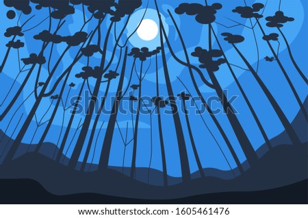 forest night landscape  trees