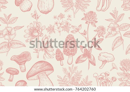 forest plants and mushrooms