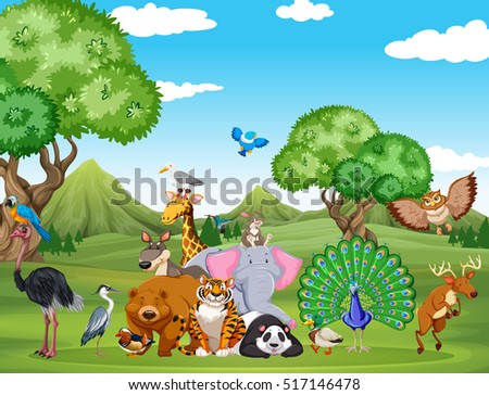 forest scene with many wild
