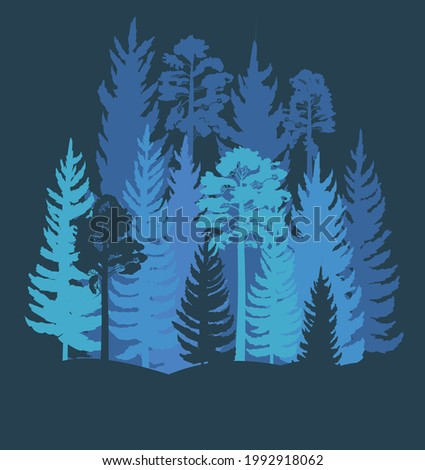 Forest Silhouette. Landscape with coniferous trees. Beautiful night view. Pine and spruce trees. Summer natural scene. Illustration vector