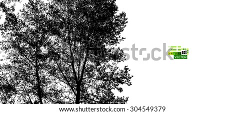 forest trees silhouette vector