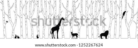 forest wild animals