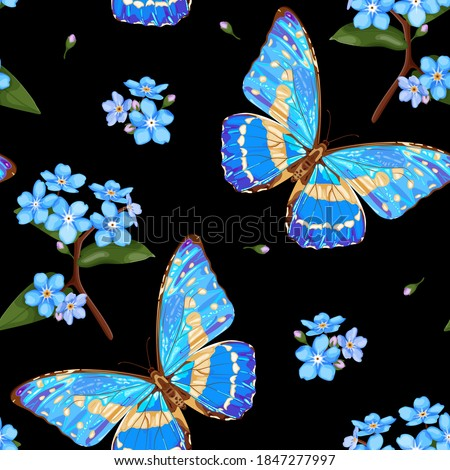 forget me not flowers and
