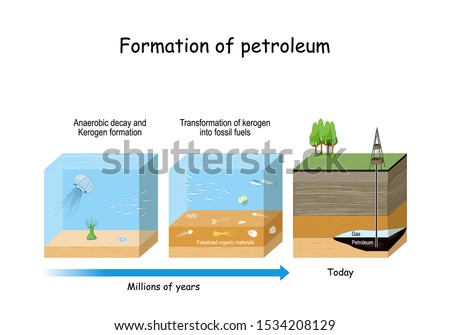 Formation of petroleum. Oil and gas formation. fossil fuel derived from ancient fossilized organic materials.