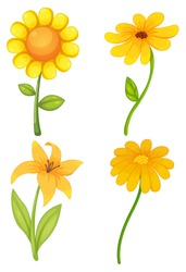 Four different kinds of yellow flowers