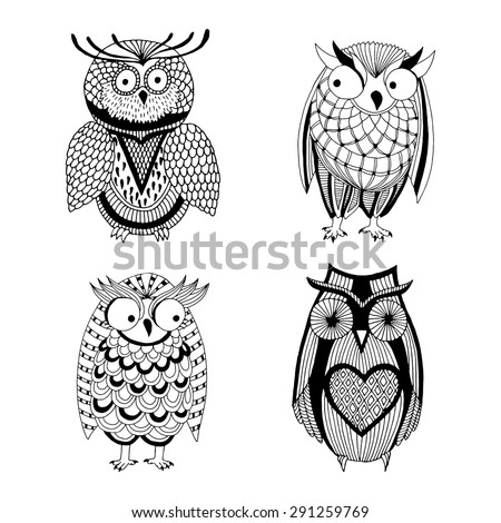 four different owls   owl