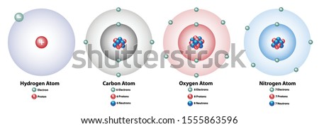 Four elements showing the nucleus and shells, numbers of electrons, protons, and neutrons. Hydrogen, carbon, oxygen, and nitrogen.