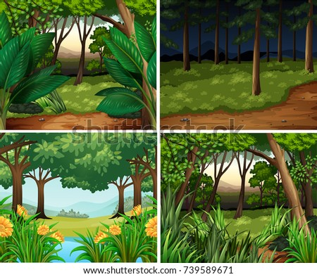 four forest scenes at day and