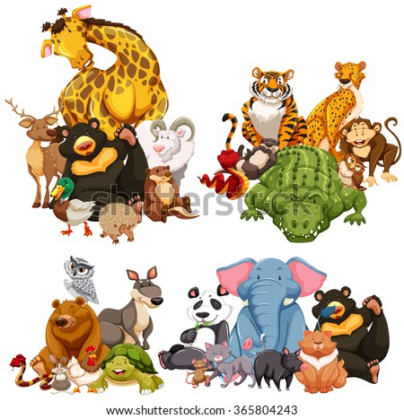 Four group of wild animals illustration